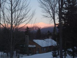 Bretton Woods Forest Cottage....Trailside ski-in ski-out! - Bretton Woods vacation rentals