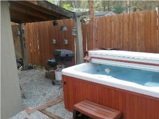 Crazy Bear vacation Rental, cozy, yet beautiful, mountain decor cabin. - Big Bear City vacation rentals