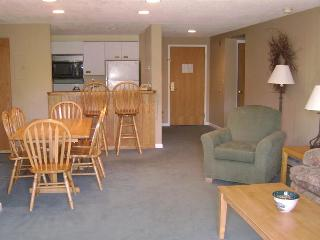 Beautiful Family Vacation Hotel Condo Rental - Lincoln vacation rentals