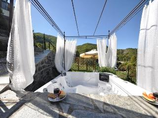 Nice Country house with outdoor mini whirlpool - San Godenzo vacation rentals