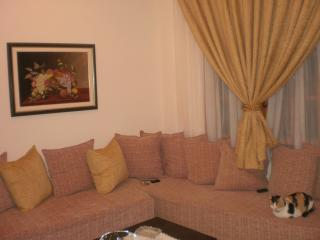 Apartment In Cretan,for Rent All The Year. - Ierapetra vacation rentals