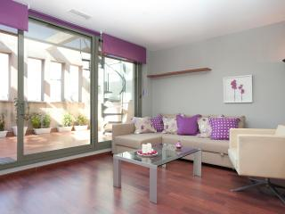 Plaza Catalunya Luxury Apt. with private terrace! - Barcelona vacation rentals