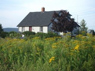 Little Tancook Island Seaside Cottage - Charlo vacation rentals