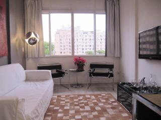 Stylish Cozy 2 bedroom apartment between Copacabana and Ipanema, close to restaurants, night life and both beaches! #42 - Rio de Janeiro vacation rentals