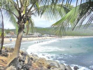 VILLA LINDA VISTA -STEPS TO THE SAND!  Beach rental with LOCATION!! - Chacala vacation rentals