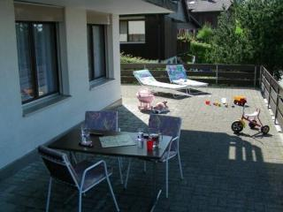 LLAG Luxury Vacation Apartment in Emmetten - central, quiet, convenience (# 4362) - Gersau vacation rentals