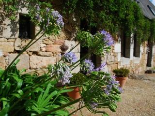 charming farm by countryside and beaches - Penvenan vacation rentals