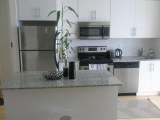 Penthouse Furnished Condo Downtown Toronto Lake - Ontario vacation rentals