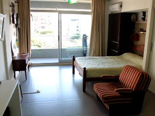 Confortable studio in Roosevelt st and O´Higgins st, Nuñez (G108NU) - Buenos Aires vacation rentals