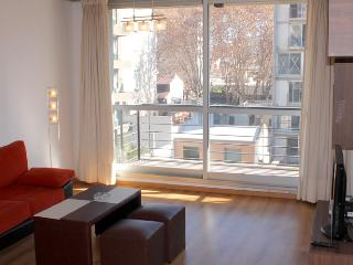 Modern one bedroom apartment - Humboldt and Guatemala st, Palermo Soho (D104PH) - Buenos Aires vacation rentals