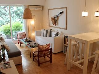 Beautiful and sunny 2 bedroom apartment - Juan Francisco Seguí  and Lafinur st, Palermo (133PS) - Buenos Aires vacation rentals