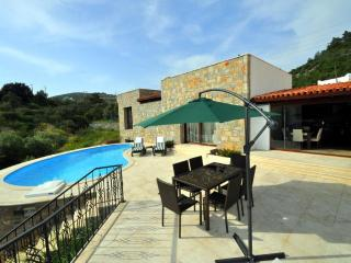 Luxury villa with private garden and swimming pool close to Bodrum center - Bodrum Peninsula vacation rentals