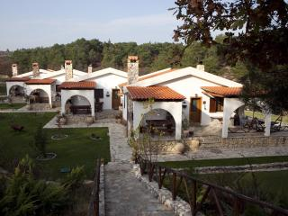 Apolithomeno Dasos Holiday Villas - Soufli vacation rentals