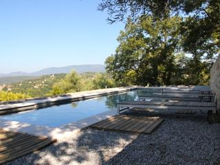 easy living villa with beautiful view - Montauroux vacation rentals