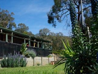 wineries, beach and fine food in the forest - Red Hill vacation rentals