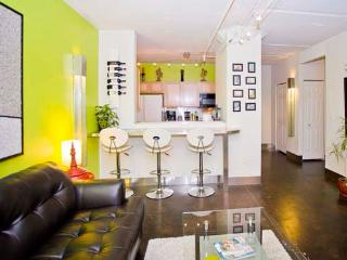 Perfect Location in the Heart of Downtown Denver - Denver vacation rentals