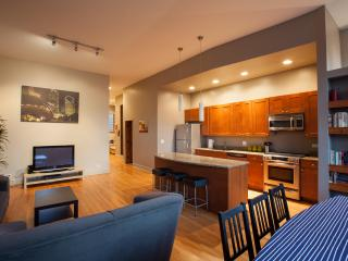 Modern 3BR + Amenities + Parking - Chicago vacation rentals