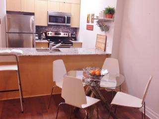 Charming Pied-A-Terre DW - Ottawa vacation rentals