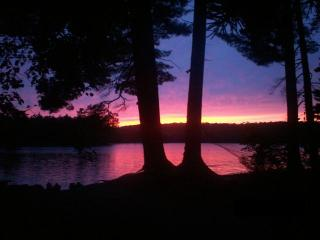 All Incl $375/Weekend+Free WiFi &Algonquin Pass! - Algonquin Park vacation rentals