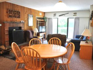 Mountain Green Unit 1-D5 - Killington Area vacation rentals