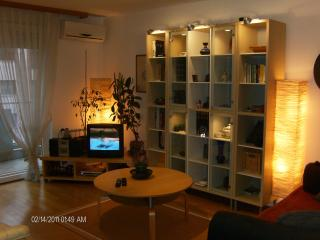 Zagreb - Central & Connected - Zagreb vacation rentals