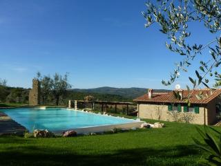 LA MERAVIGLIA beautiful stone house on hill - Monte San Savino vacation rentals
