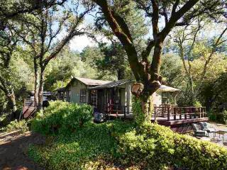 Dry Creek Vista - Healdsburg vacation rentals