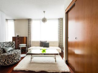 Chic, luxury, Studio in the heart of Montreal - Montreal vacation rentals