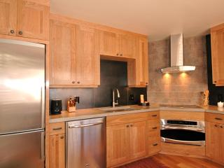Beautifully Remodeled Condo On River In Telluride! - Telluride vacation rentals