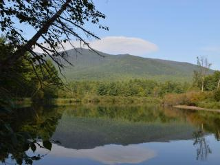 Camp Yonnondio - Relaxing on Lake Everest - Wilmington vacation rentals
