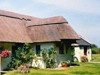 Rose Cottage Sleeps 4 - Bettystown vacation rentals