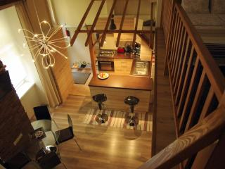 Downtown cosy studioapt with free WIFI&tea - Hungary vacation rentals