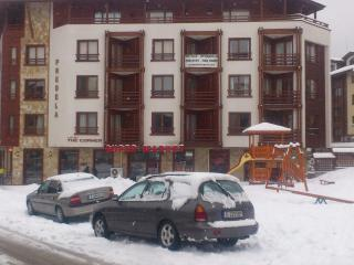 Spacious 2 Bed  Ski Apartment in Bansko - Bansko vacation rentals