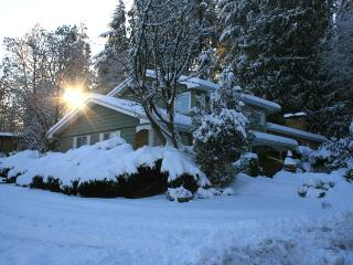4bedroom 2,5bath house in Port Moody  30 min to Vancouver - Port Moody vacation rentals