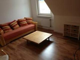 Vacation Apartment in Essen - 710 sqft, comfortable, WiFi (# 4394) - North Rhine-Westphalia vacation rentals