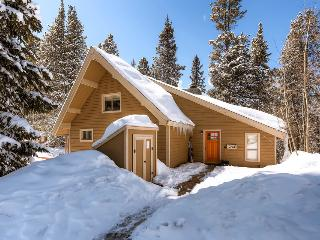 Cozy cabin with hot tub and free shuttle to the slopes - Barton Creek Lodge - Mountain Village vacation rentals