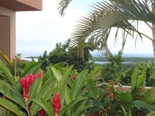 Bayview with Pool Suite - Vieques vacation rentals