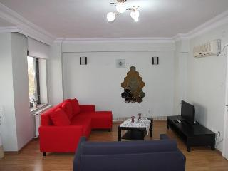 LUXURY ECONOMIC  CITY CENTER FLAT IN ISTANBUL - Istanbul vacation rentals