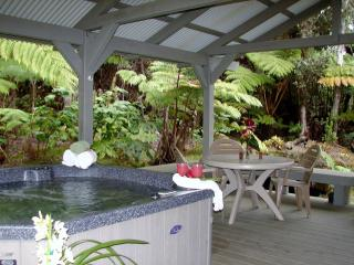 Hot Tub, Fireplace, Privacy and No Cleaning Fees! - Volcano vacation rentals