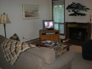 Olympic Pennisula Condo - Port Townsend vacation rentals