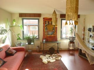 Luxurious appartment in Amsterdam center - Holland (Netherlands) vacation rentals