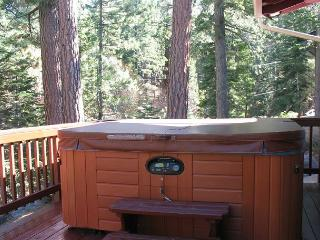 Enjoy this cozy mountain cabin with a private hot tub! - South Lake Tahoe vacation rentals