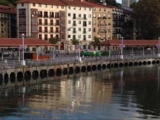 Casco Viejo, lovely apartment with wifi next to the river - Bilbao vacation rentals
