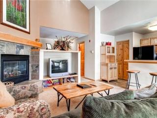 Twin Elk Lodge #B7 ~ RA43229 - Breckenridge vacation rentals