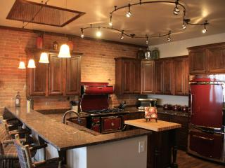 Downtown Penthouse - Montrose vacation rentals