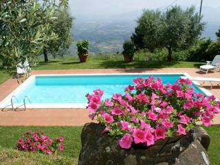charming farmhouse, pool & views! - Lucca vacation rentals