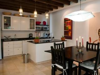 Casas Maxim - The Penthouse - San Miguel de Allende vacation rentals