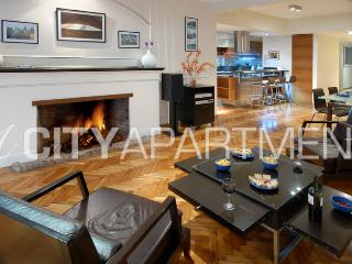 Recoleta HUGE 2 bedroom (RC3) Excellent location! - Buenos Aires vacation rentals
