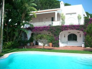 Lady Bouganvillea - Ischia vacation rentals
