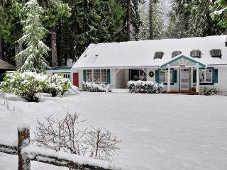 Huckleberry Cottage - Government Camp vacation rentals